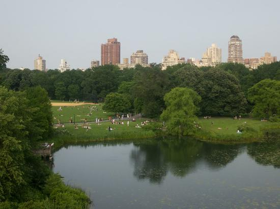 natural-history-central-park